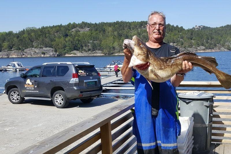 Sorlandet Feriesenter Risor vissen